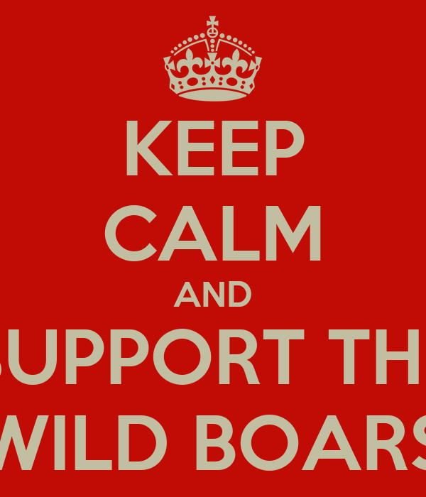 KEEP CALM AND SUPPORT THE WILD BOARS