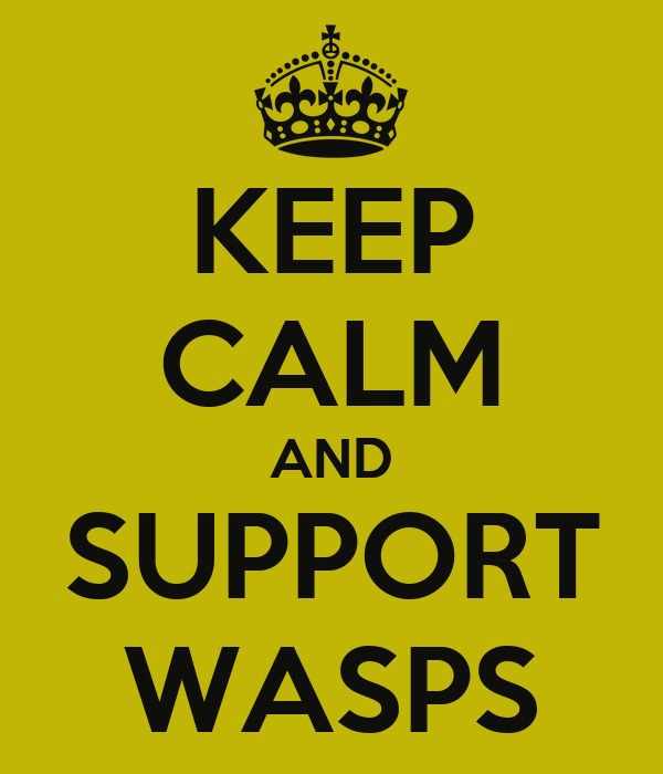 KEEP CALM AND SUPPORT WASPS