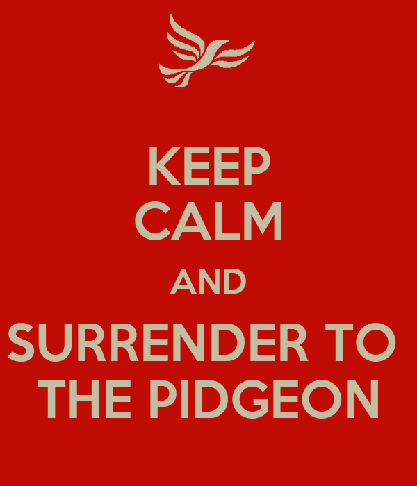 KEEP CALM AND SURRENDER TO  THE PIDGEON