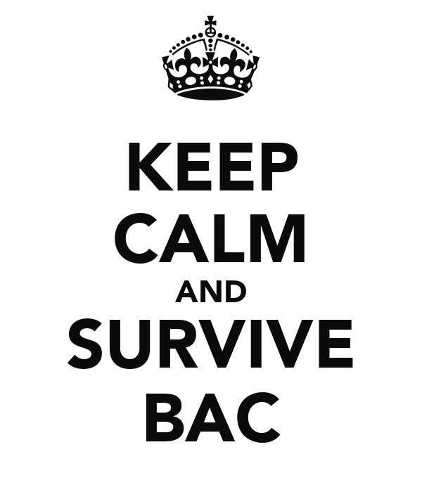 KEEP CALM AND SURVIVE BAC