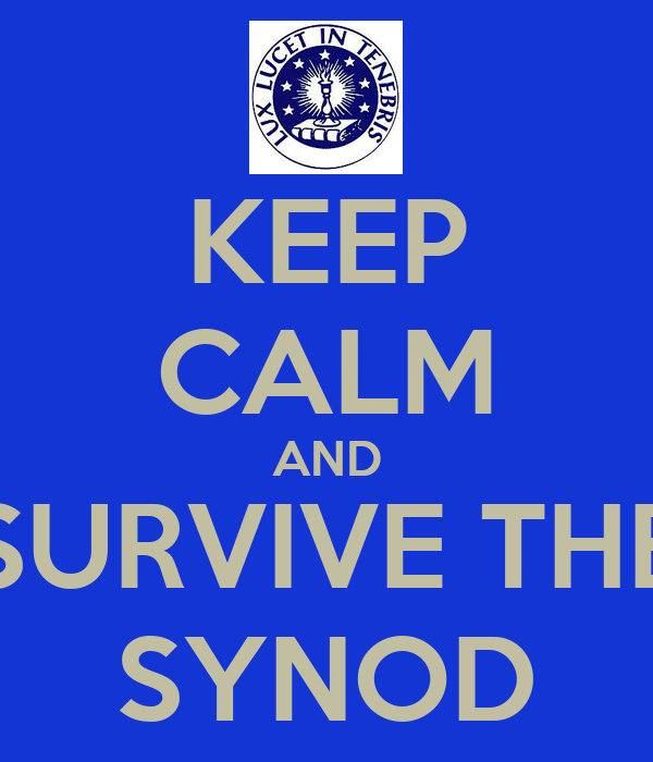 KEEP CALM AND SURVIVE THE SYNOD