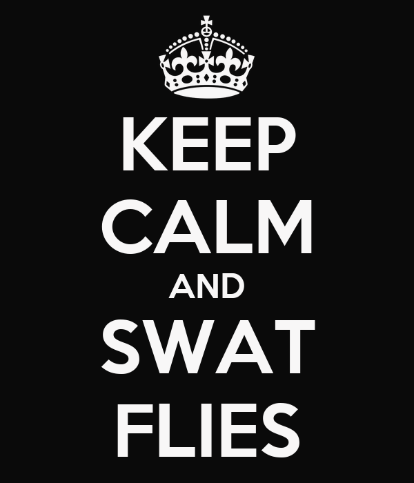 KEEP CALM AND SWAT FLIES