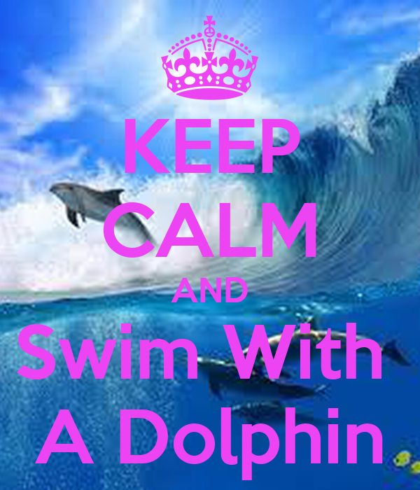 KEEP CALM AND Swim With  A Dolphin