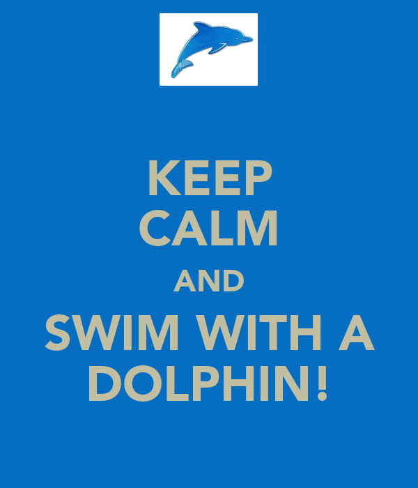 KEEP CALM AND SWIM WITH A DOLPHIN!