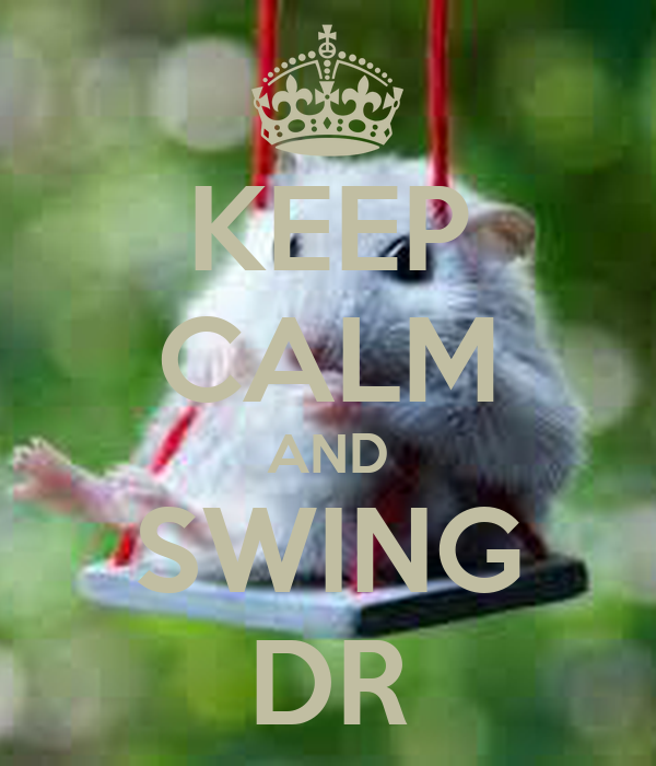 KEEP CALM AND SWING DR