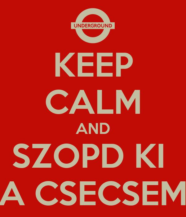 KEEP CALM AND SZOPD KI  A CSECSEM