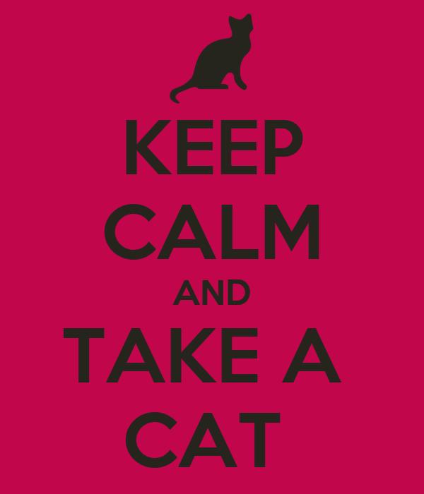 KEEP CALM AND TAKE A  CAT