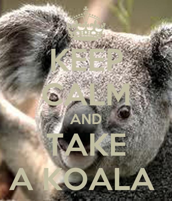 KEEP CALM AND TAKE A KOALA