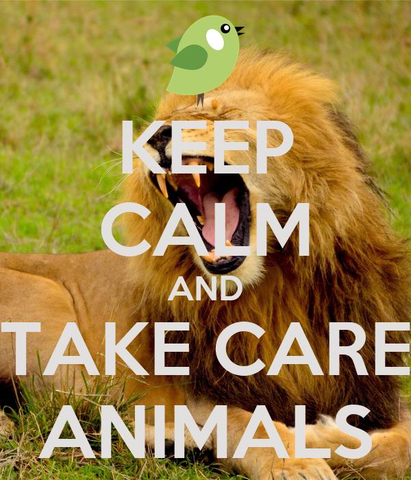 KEEP CALM AND TAKE CARE ANIMALS