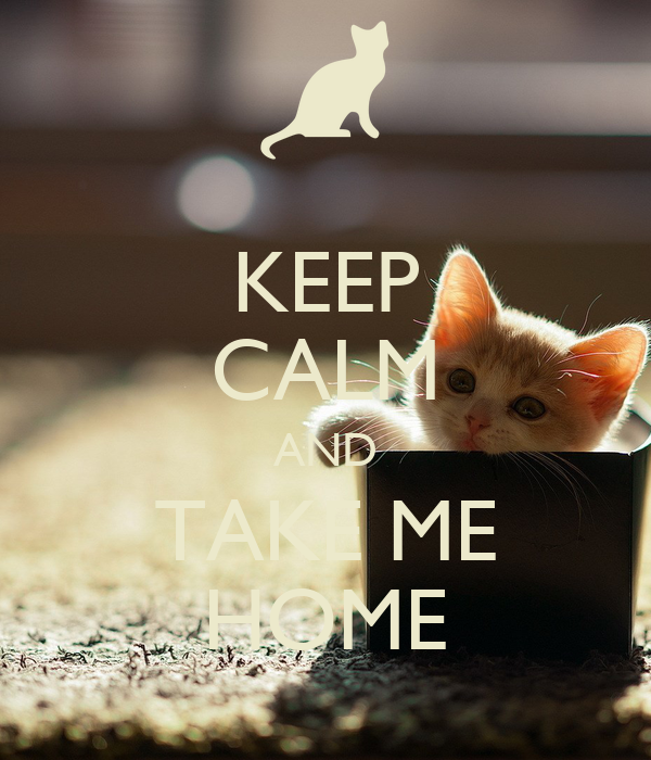 KEEP CALM AND TAKE ME HOME