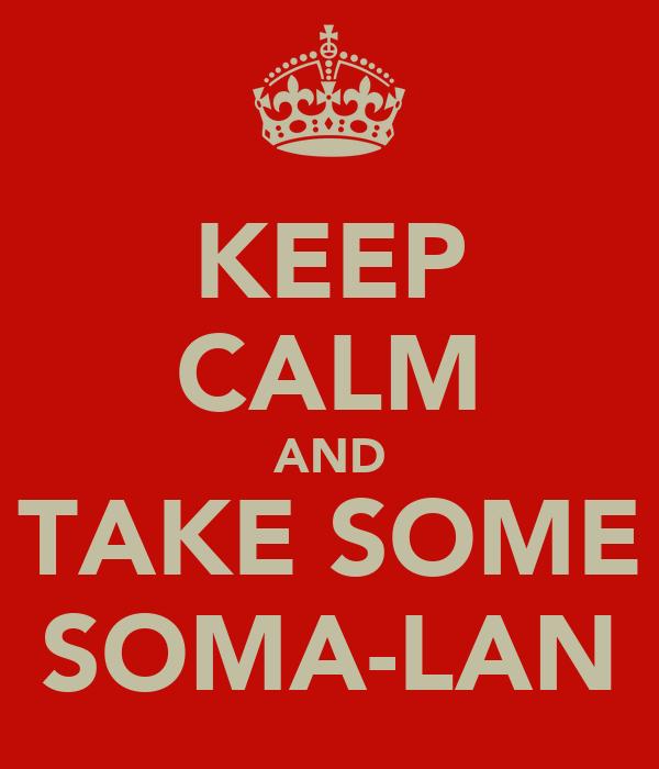 KEEP CALM AND TAKE SOME SOMA-LAN