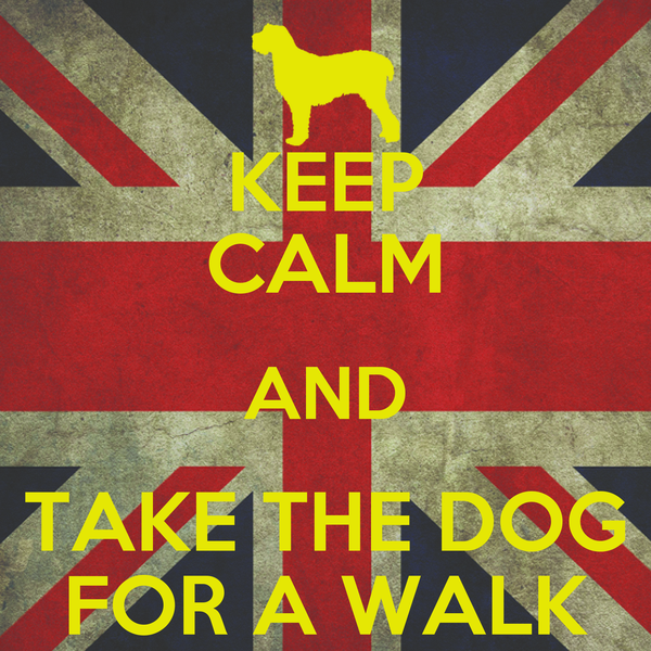 KEEP CALM AND TAKE THE DOG FOR A WALK