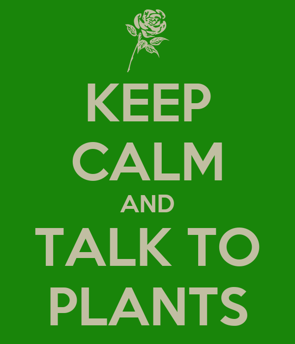 KEEP CALM AND TALK TO PLANTS