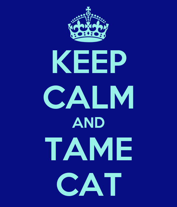 KEEP CALM AND TAME CAT
