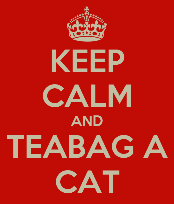 KEEP CALM AND TEABAG A CAT