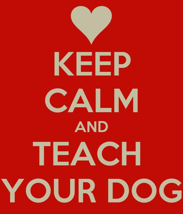 KEEP CALM AND TEACH  YOUR DOG