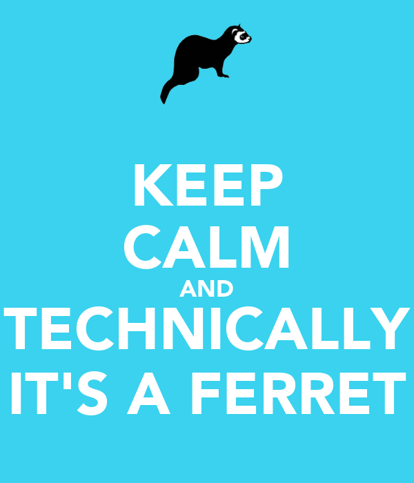 KEEP CALM AND TECHNICALLY IT'S A FERRET