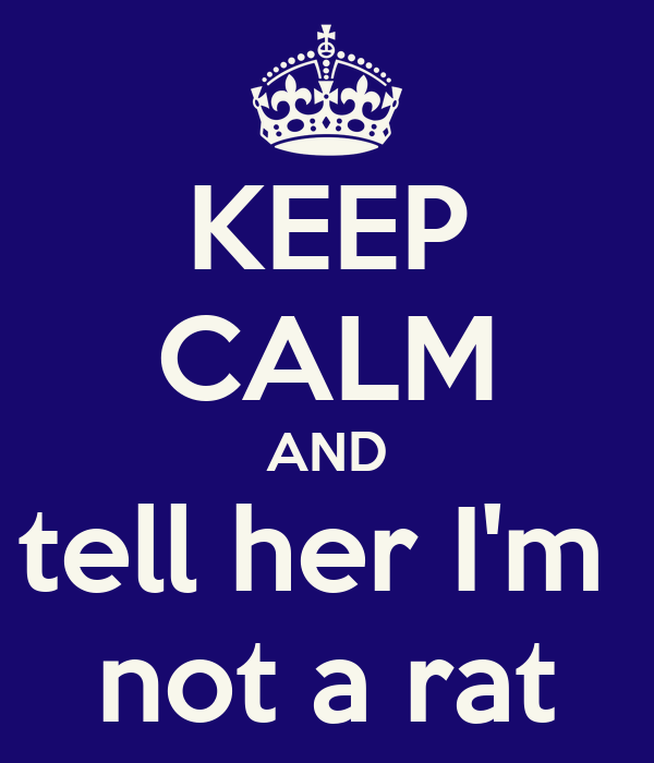 KEEP CALM AND tell her I'm  not a rat