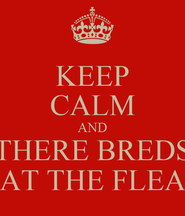 KEEP CALM AND THERE BREDS AT THE FLEA