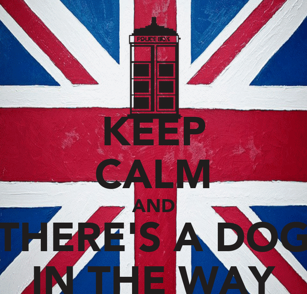 KEEP CALM AND THERE'S A DOG IN THE WAY