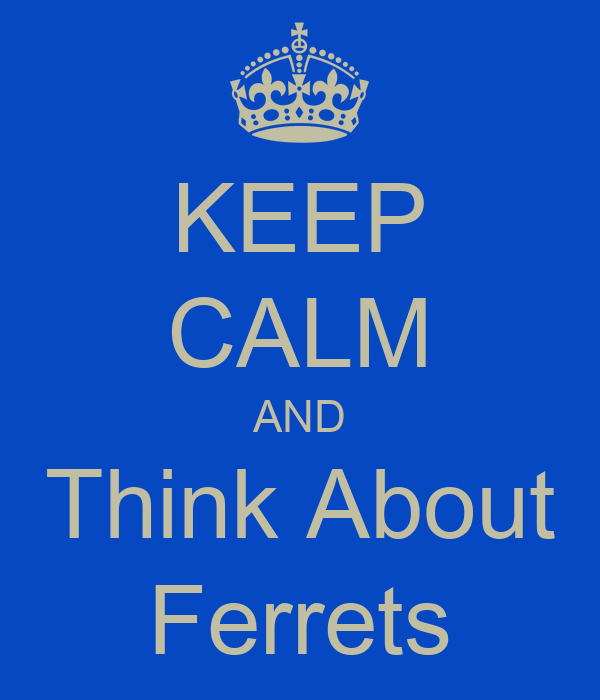 KEEP CALM AND Think About Ferrets