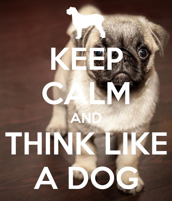 KEEP CALM AND THINK LIKE A DOG