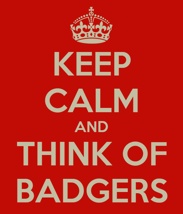 KEEP CALM AND THINK OF BADGERS