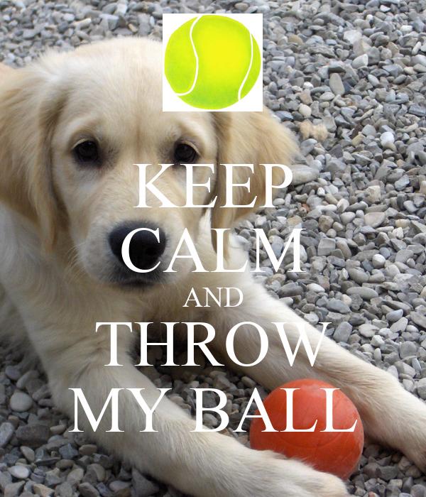 KEEP CALM AND THROW MY BALL