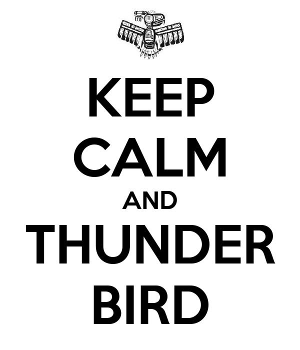 KEEP CALM AND THUNDER BIRD