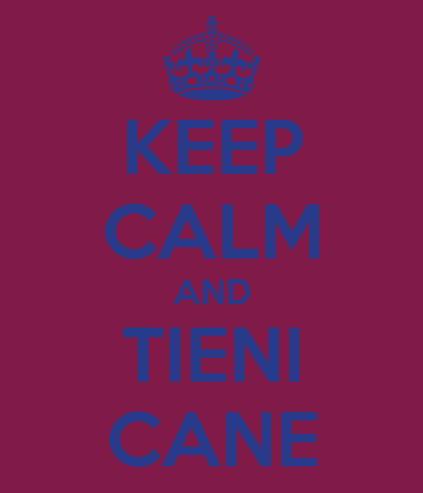 KEEP CALM AND TIENI CANE