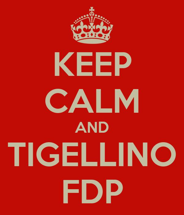 KEEP CALM AND TIGELLINO FDP