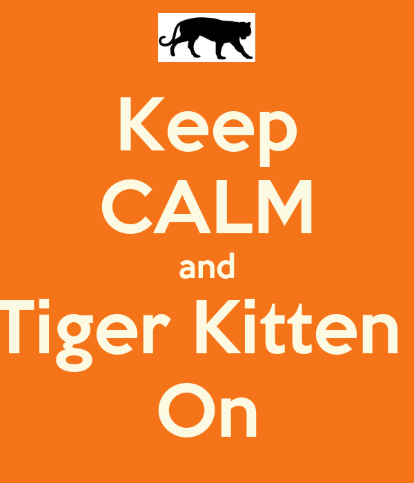 Keep CALM and Tiger Kitten  On