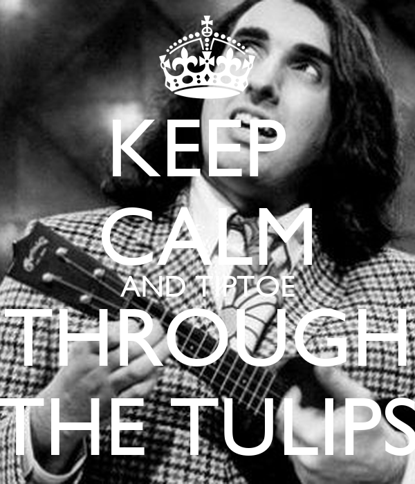 KEEP  CALM AND TIPTOE THROUGH THE TULIPS