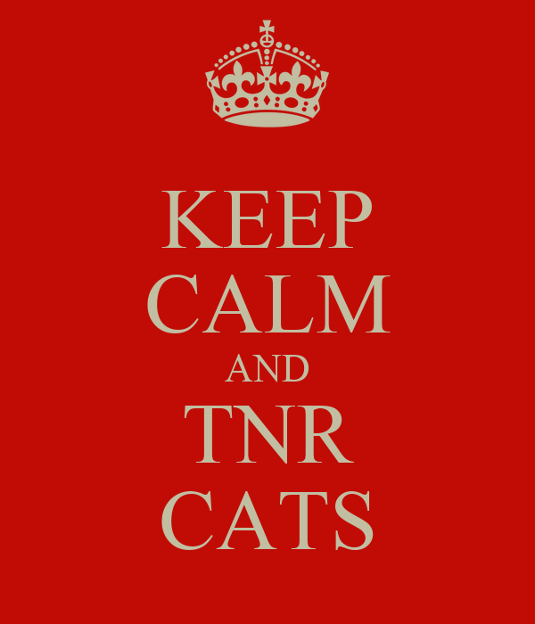 KEEP CALM AND TNR CATS