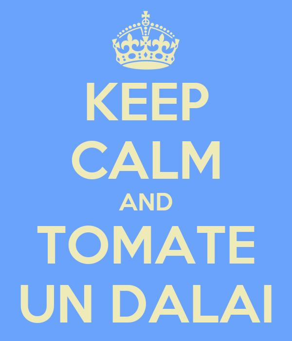 KEEP CALM AND TOMATE UN DALAI