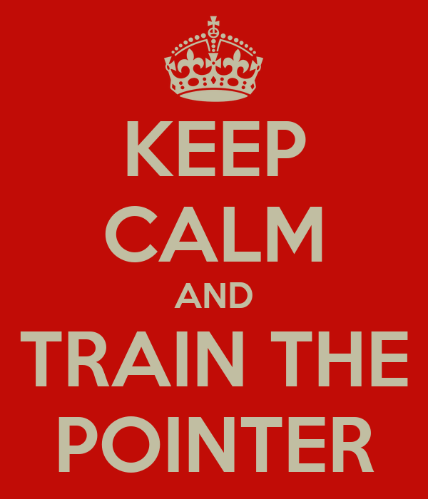 KEEP CALM AND TRAIN THE POINTER