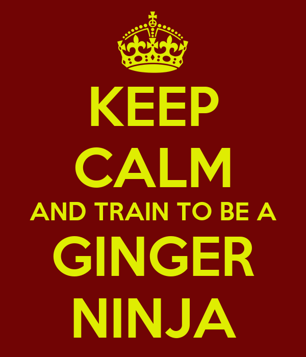 KEEP CALM AND TRAIN TO BE A GINGER NINJA