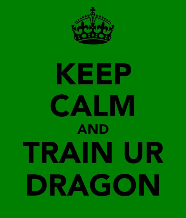 KEEP CALM AND TRAIN UR DRAGON