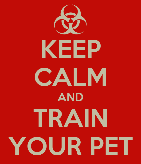 KEEP CALM AND TRAIN YOUR PET