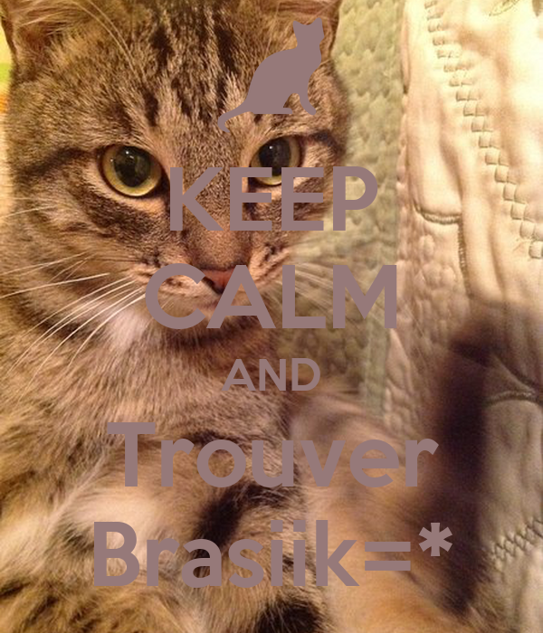 KEEP CALM AND Trouver Brasiik=*