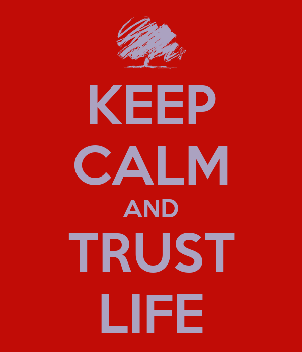 KEEP CALM AND TRUST LIFE