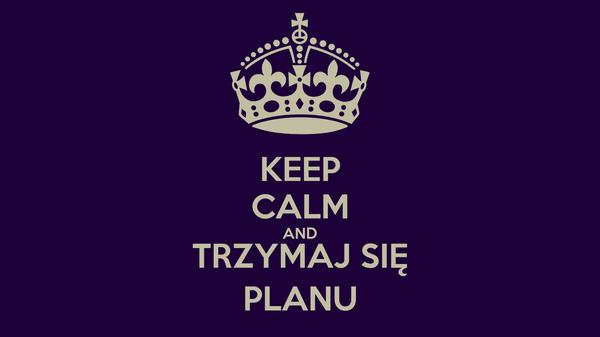 KEEP CALM AND TRZYMAJ SIĘ PLANU