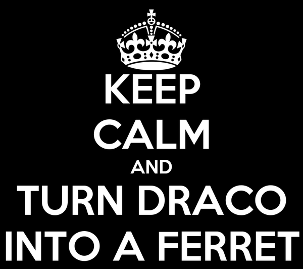 KEEP CALM AND TURN DRACO INTO A FERRET
