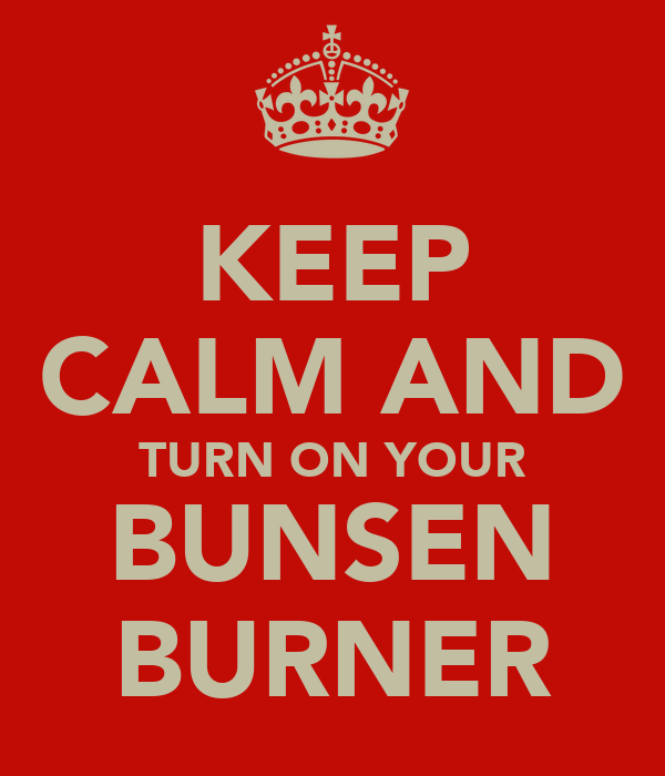 KEEP CALM AND TURN ON YOUR BUNSEN BURNER