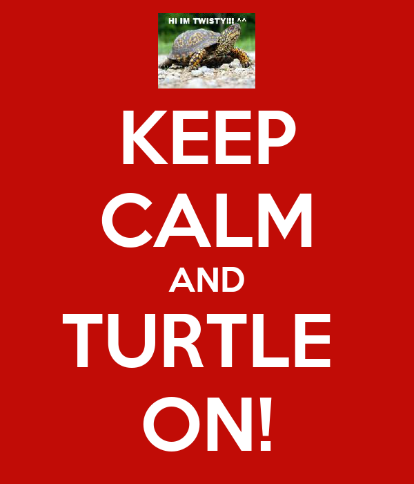 KEEP CALM AND TURTLE  ON!