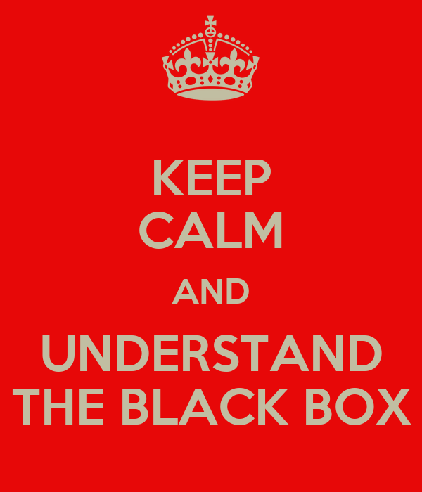 KEEP CALM AND UNDERSTAND THE BLACK BOX