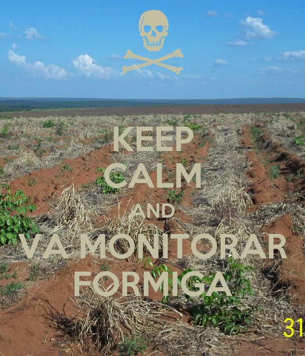 KEEP CALM AND VÁ MONITORAR FORMIGA