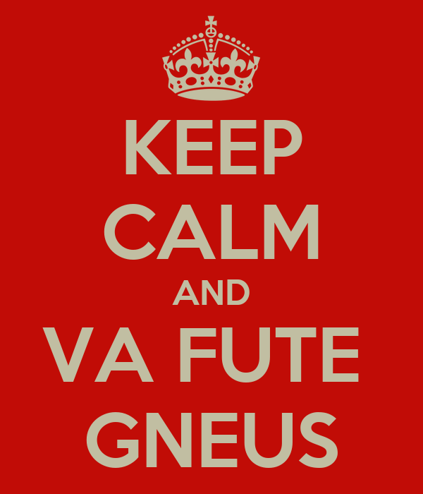 KEEP CALM AND VA FUTE  GNEUS