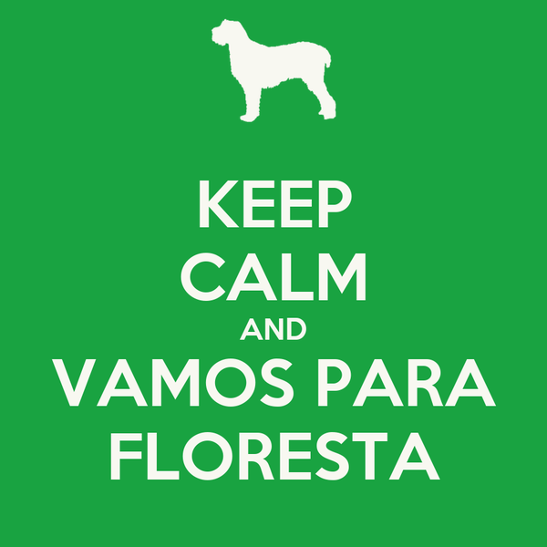 KEEP CALM AND VAMOS PARA FLORESTA