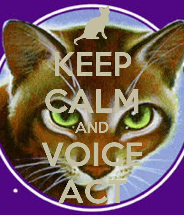 KEEP CALM AND VOICE ACT